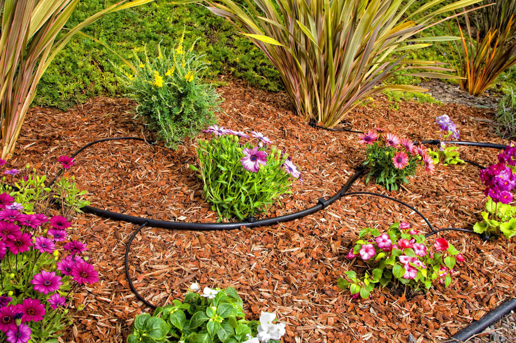 Best Drip Irrigation System For 2018 Complete Buyers Guide Updated Best Garden Hose